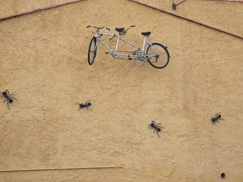 Ayuntamiento de Benicassim imagen de fachada